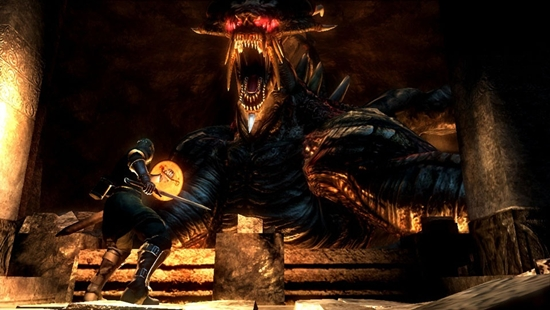 Demon's Souls beat out Dragon Age Origins by a solid 40 votes.