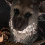 Santa Monica and other developers helping with The Last Guardian's development