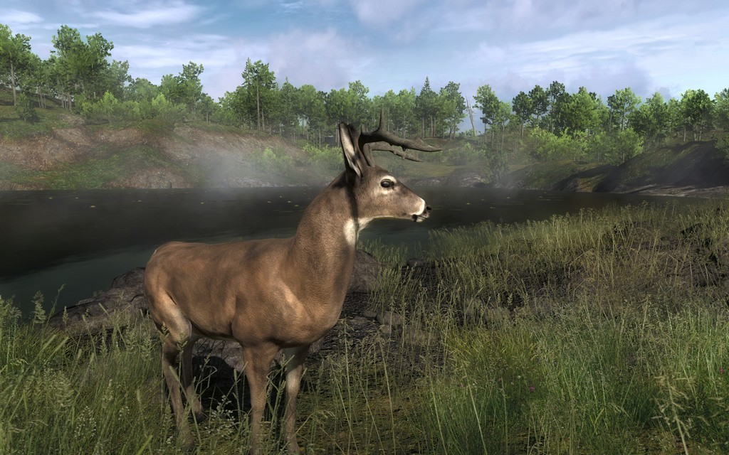 thehunter gets new expansion