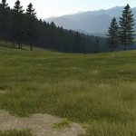 Outerra: Procedural grass rendering with 45m range pushes the visual bar