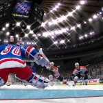 NHL 13: Goalie screens