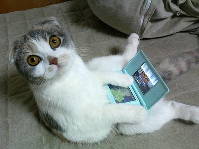 videogame cat
