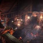 The Witcher 3 Wild Hunt (13)