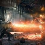 The Witcher 3 Wild Hunt (14)
