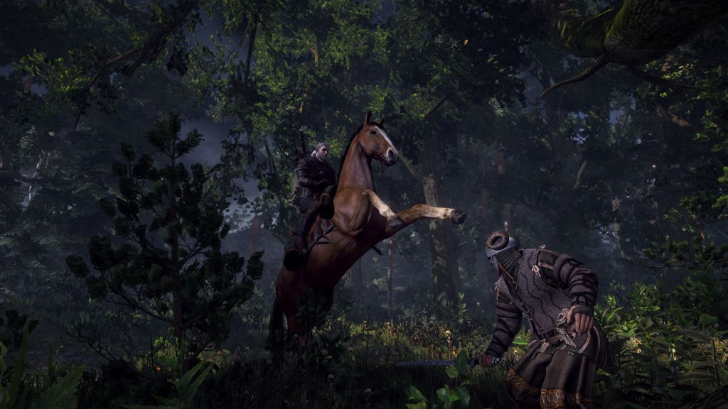 The Witcher 3 Wild Hunt (7)
