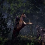 Witcher 3 does not have any DRM – CD Projekt