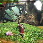Monster Hunter 4 (11)