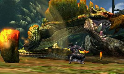 Monster Hunter 4 (20)