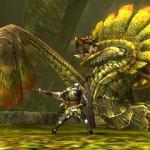 Monster Hunter 4 (4)