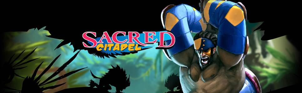 Sacred Citadel Review
