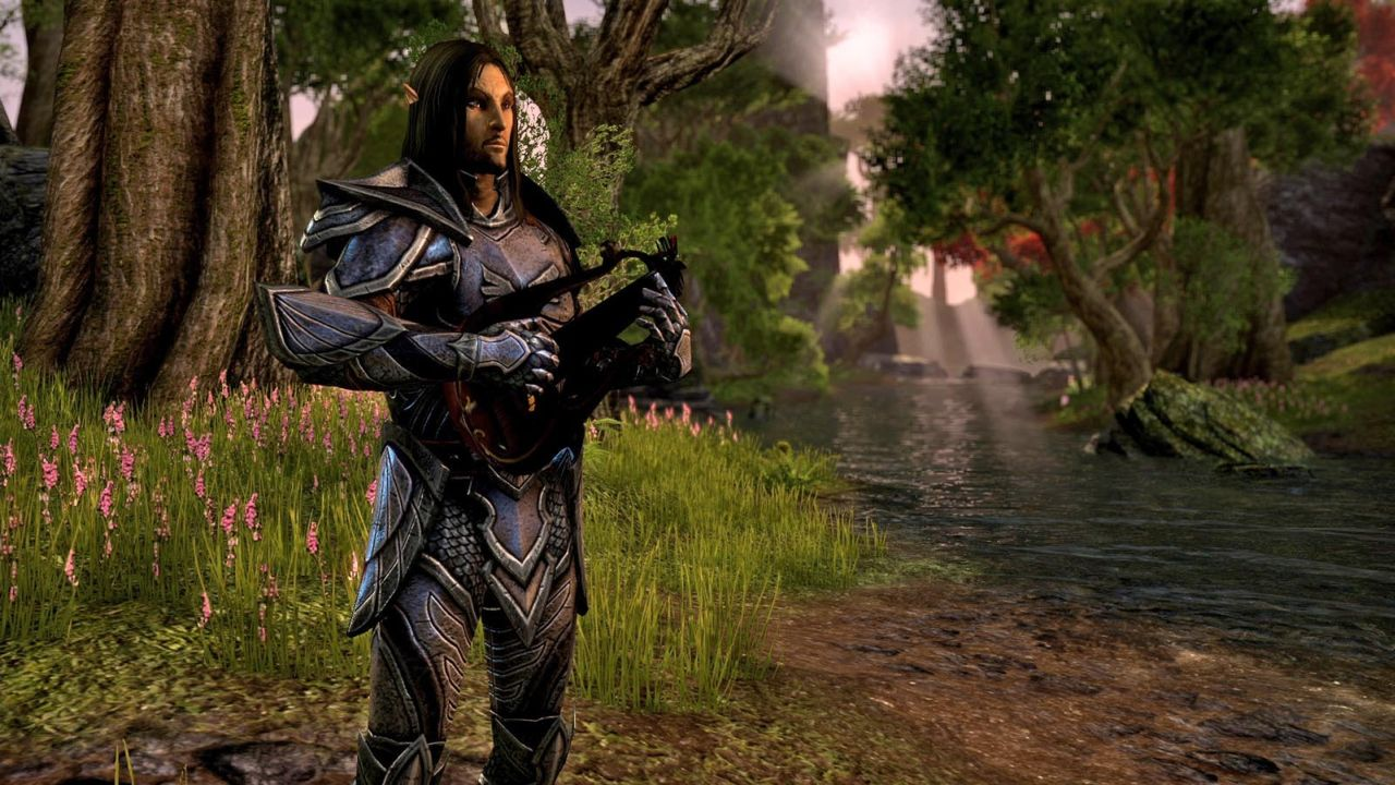The Elder Scrolls Online (6)