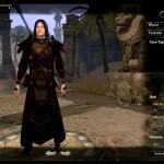 The Elder Scrolls Online_leaked gameplay (4)