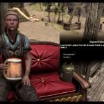 The Elder Scrolls Online_leaked gameplay (5)