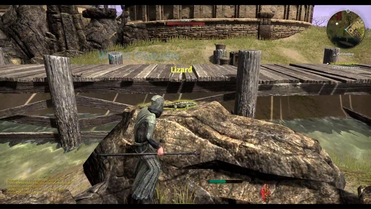 The Elder Scrolls Online_leaked gameplay (6)