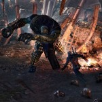 """The Witcher 3: """"No Such Thing as Bosses"""", Plenty of Huge Opponents and Important Foes"""