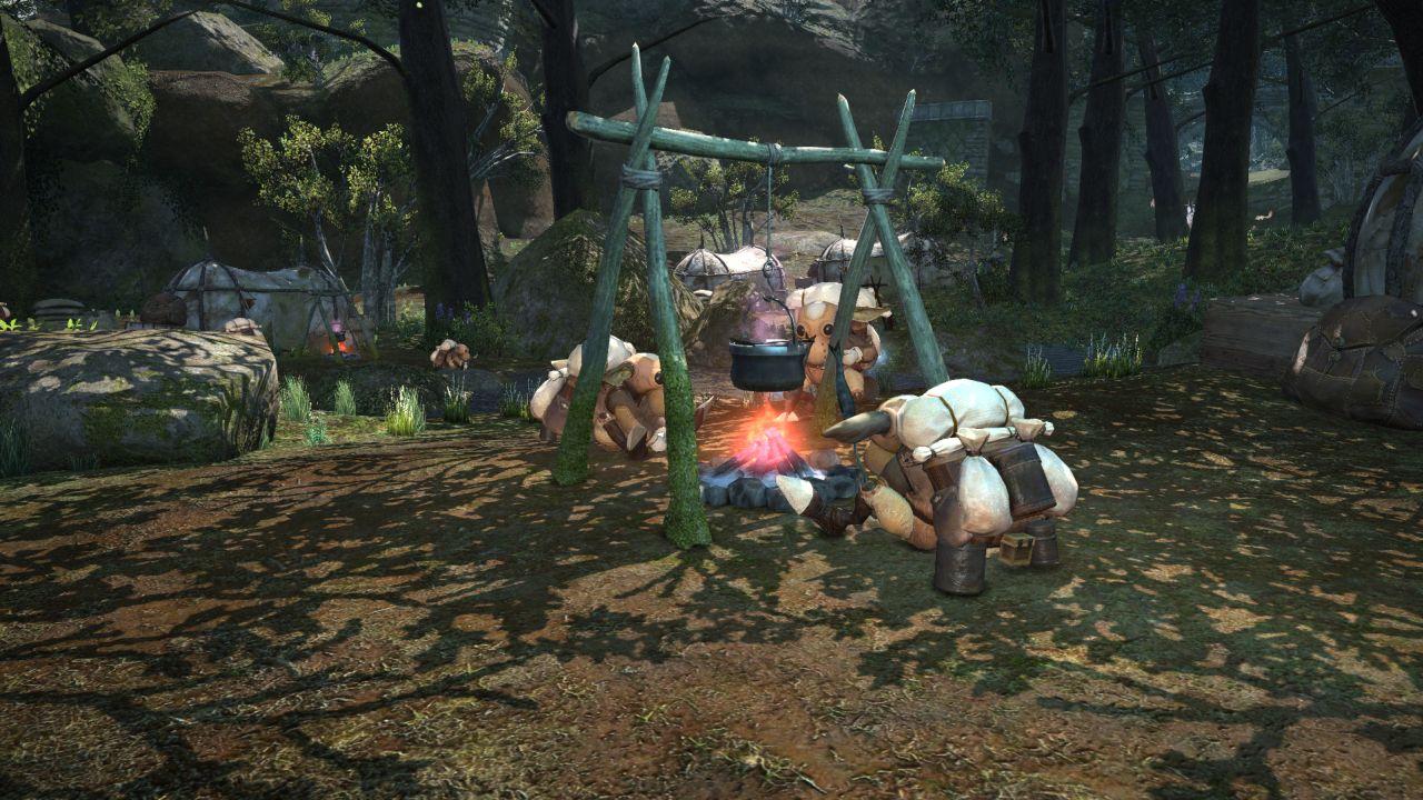 Final Fantasy XIV A Realm Reborn (11)