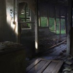The Last of Us (15)