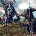 The Witcher 3 Wild Hunt (10)