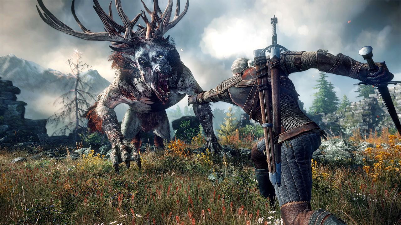 The Witcher 3 Wild Hunt (10)