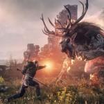 The Witcher 3 Wild Hunt (6)