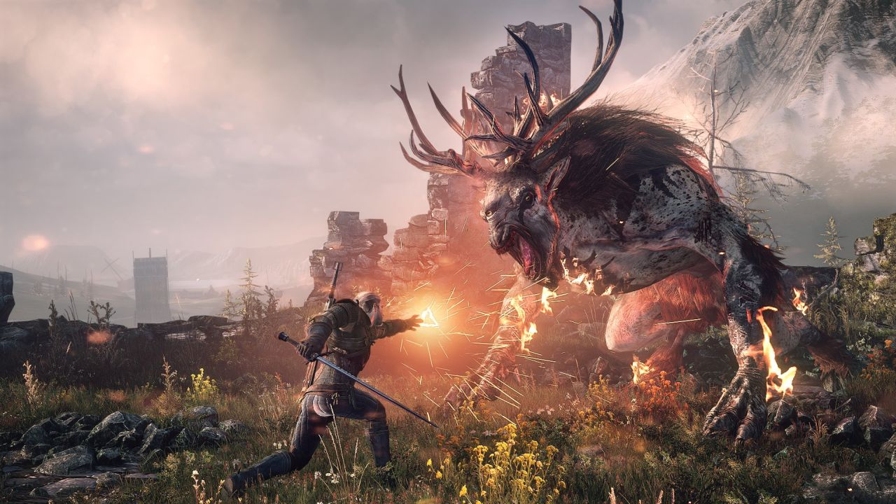 The Witcher 3 Wild Hunt (6)