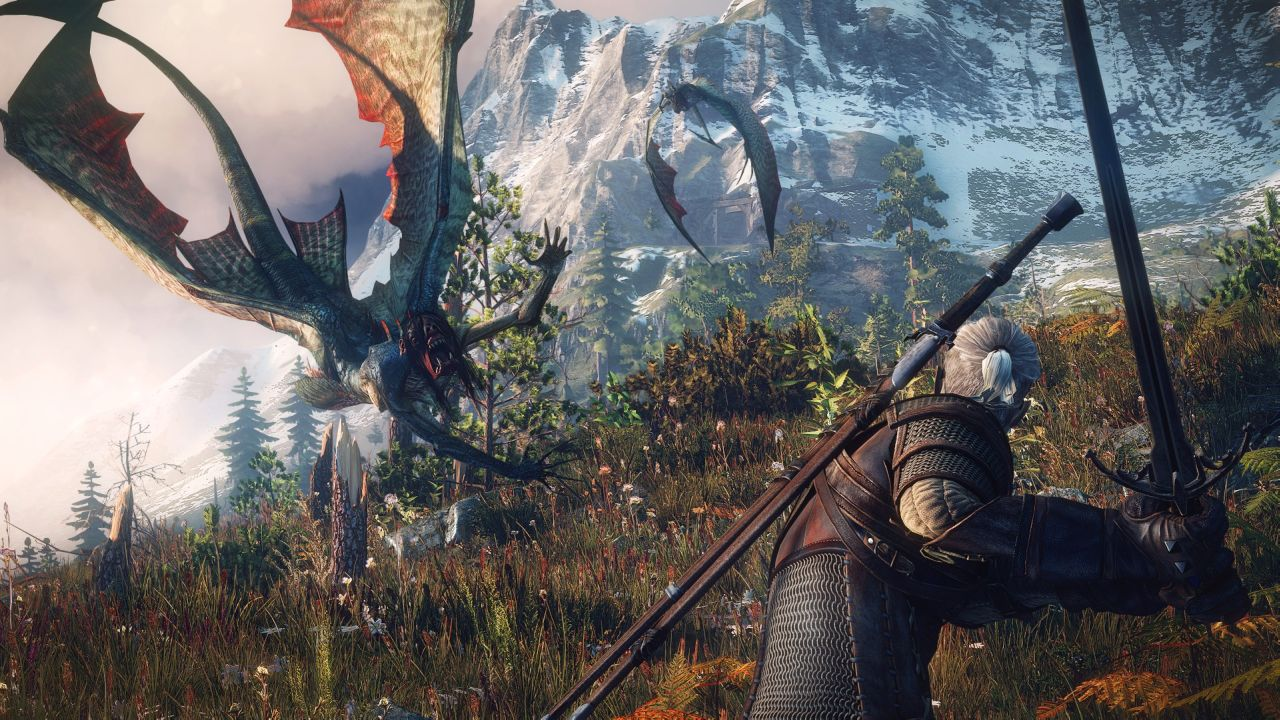 The Witcher 3 Wild Hunt (8)