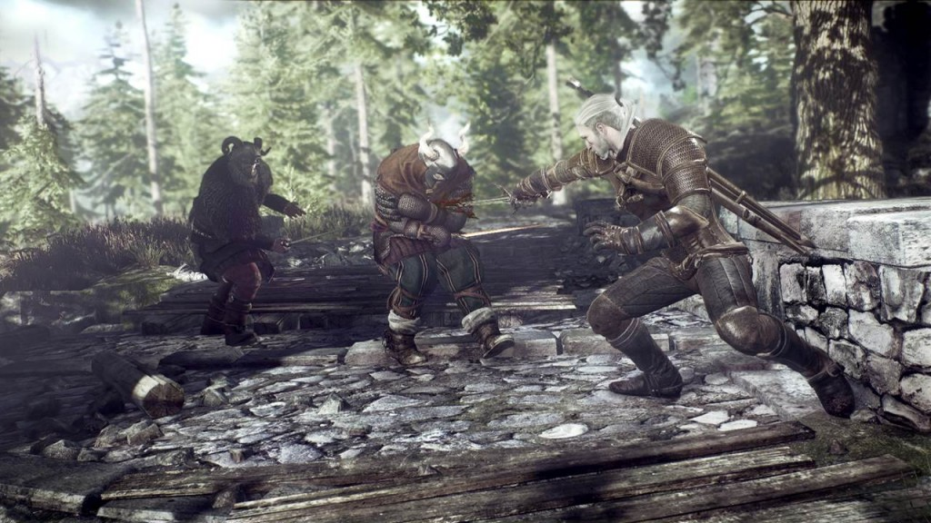 The Witcher 3 Wild Hunt