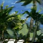 mp_resort