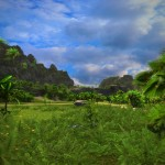 Tropico 5 (5)