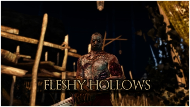 Fleshly Hollow dark souls 2 pc mod
