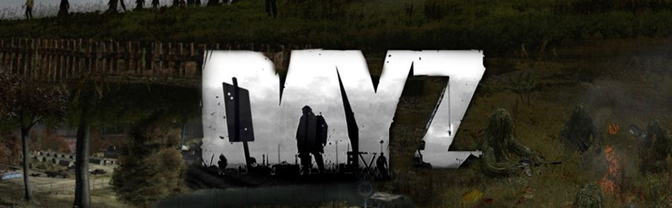 DayZ Interview: 'We Certainly Did Not Take The Money And Run Off'