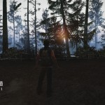 state of decay pc 4