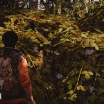 state of decay pc 7