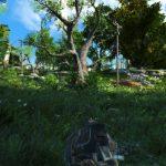 Fallout 4 grass