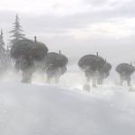 Syberia 3 Walkthrough With Ending