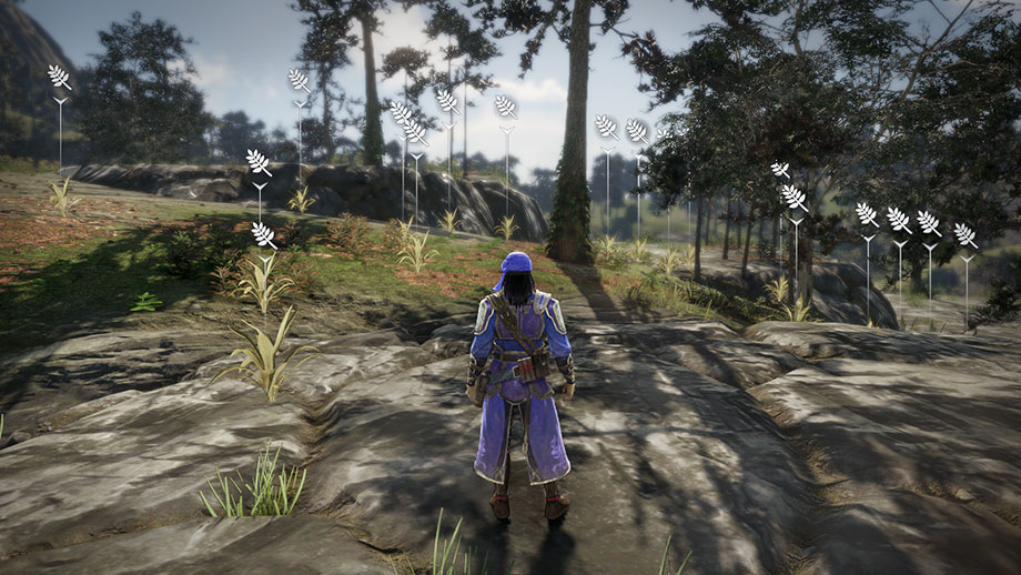 Dynasty Warriors 9 Collection and Exploration