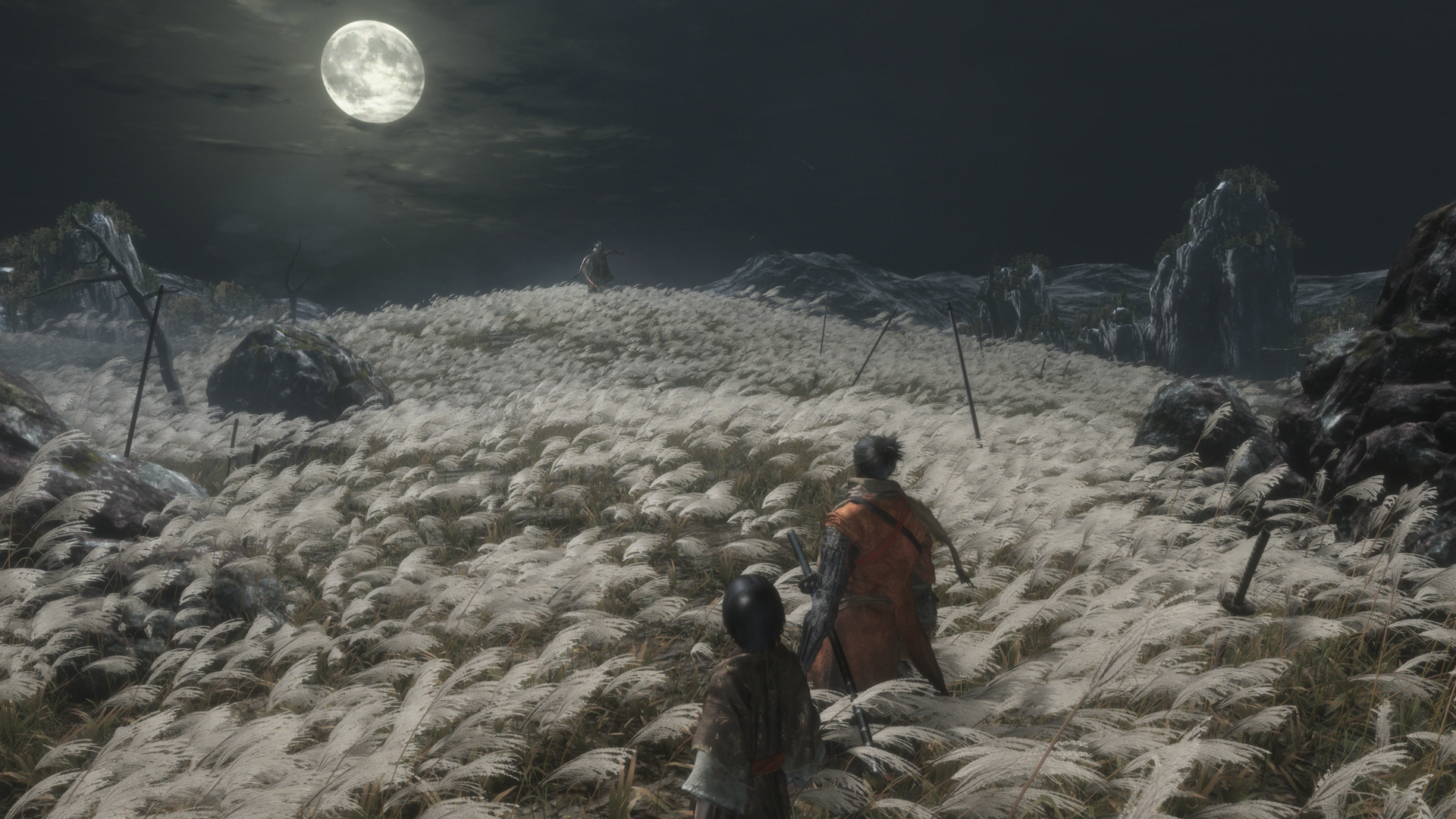 sekiro - photo #25