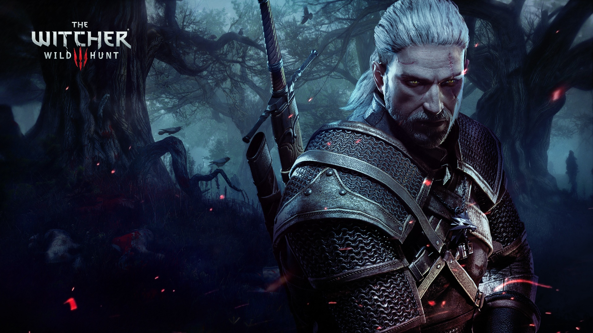 The Witcher More Hints Switch witcher-3.jpg