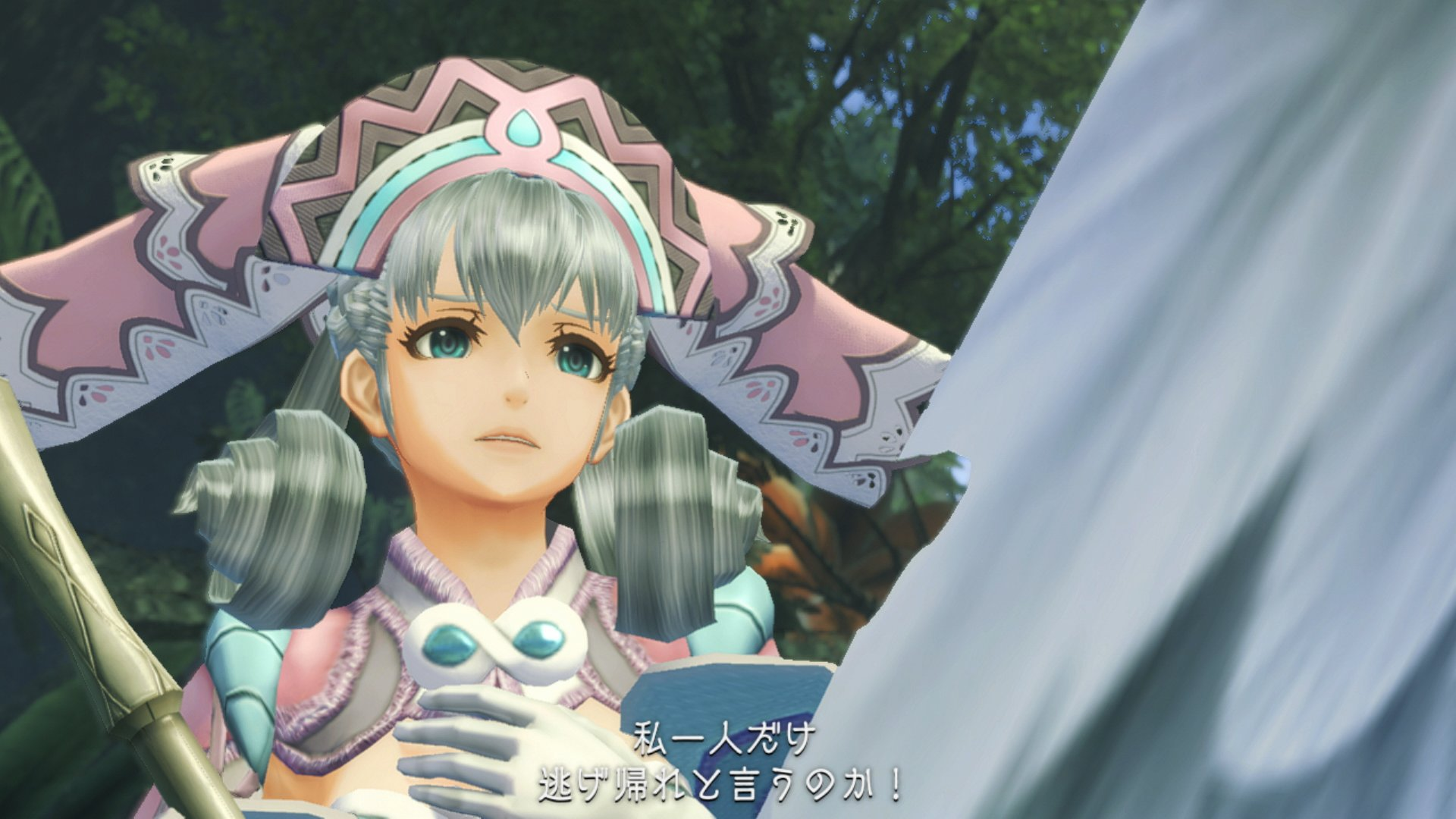 Xenoblade Chronicles Definitive Edition_00011