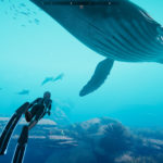 Beyond Blue's New Trailer Dives Into the Narrative