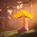 """Everwild Development Reset Reports Are """"a Little Extreme"""" – Xbox Game Studios Boss"""