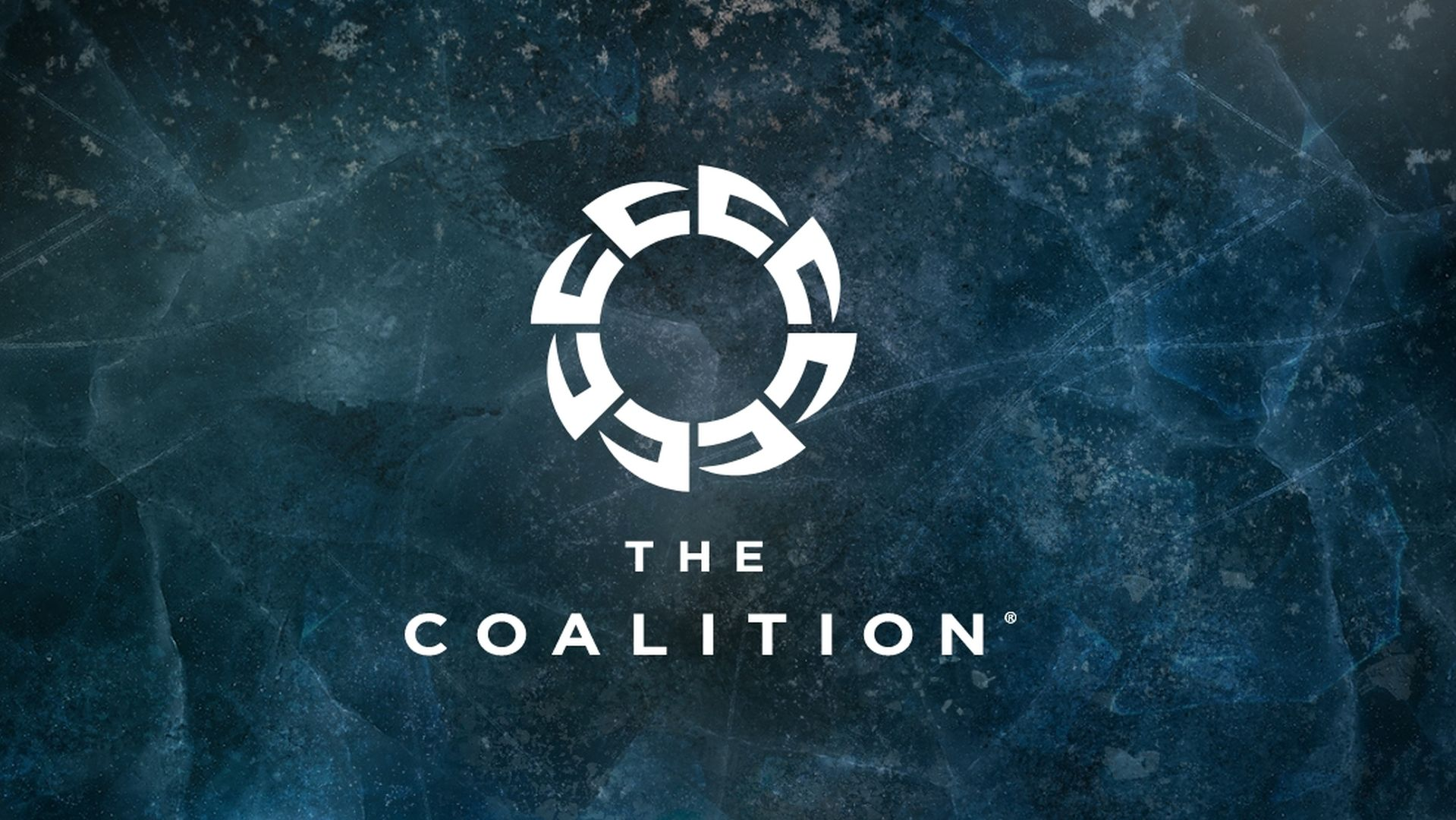 The Coalition