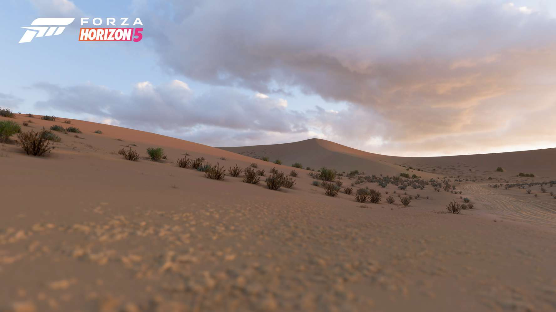 Forza Horizon 5_08