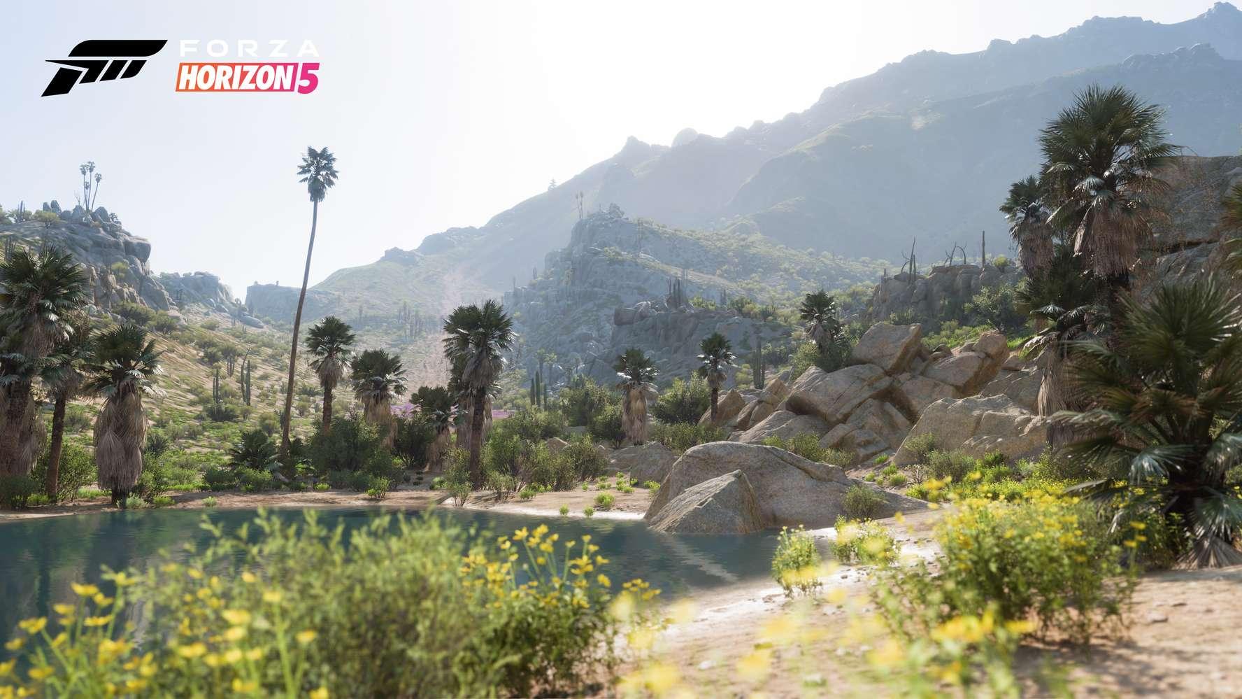 Forza Horizon 5_10