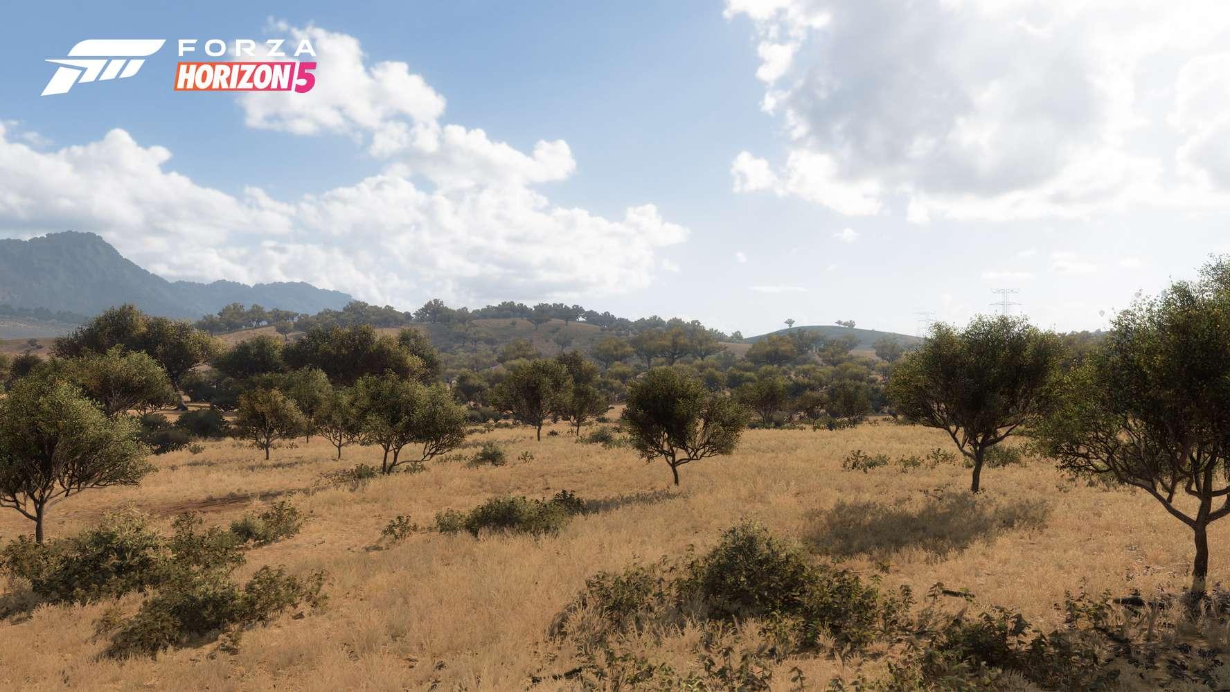 Forza Horizon 5_11